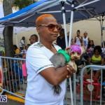 Bermuda Day Parade, May 25 2015 (38)