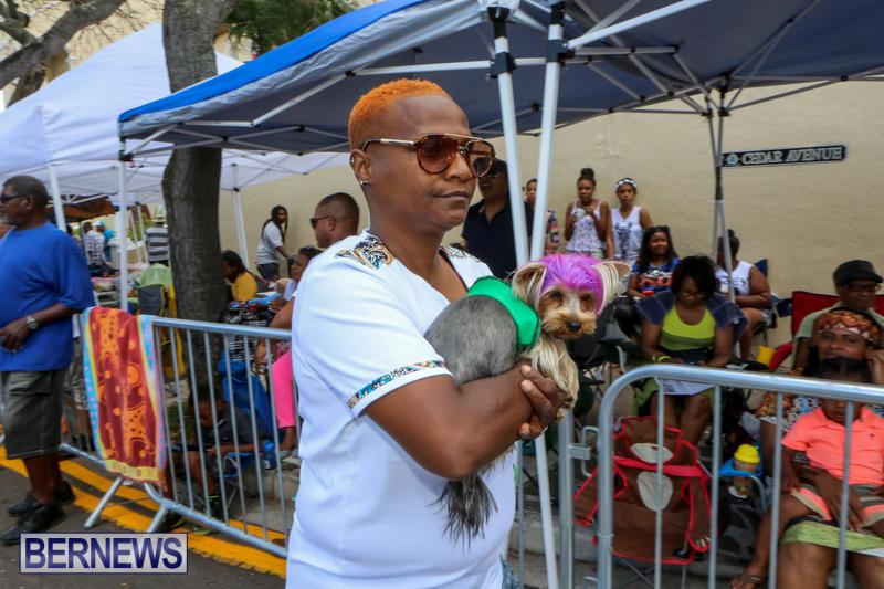 Bermuda-Day-Parade-May-25-2015-38