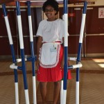 CedarBridge Multicultural Day Bermuda, May 22 2015-17