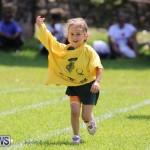 Devonshire Preschool Sports Bermuda, May 22 2015-100