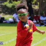 Devonshire Preschool Sports Bermuda, May 22 2015-105