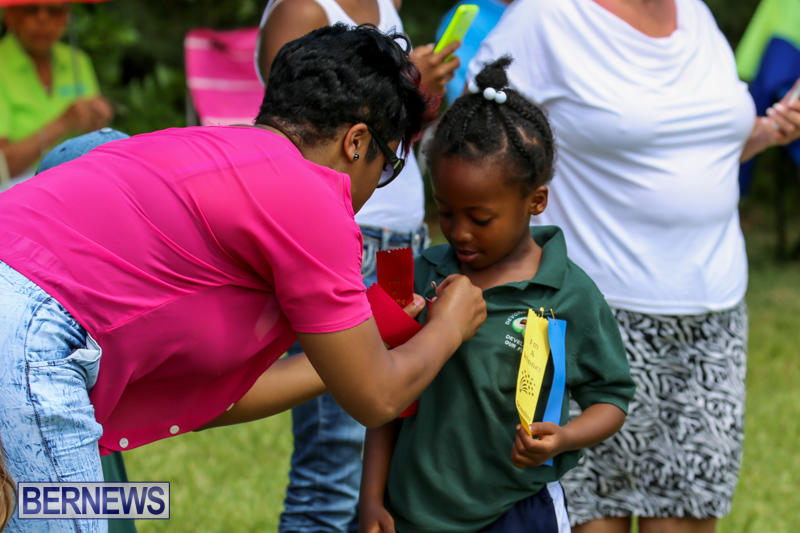 Devonshire-Preschool-Sports-Bermuda-May-22-2015-114