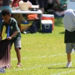 Devonshire Preschool Sports Bermuda, May 22 2015-117