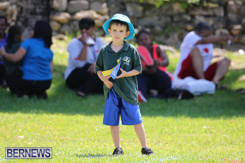 Devonshire-Preschool-Sports-Bermuda-May-22-2015-129