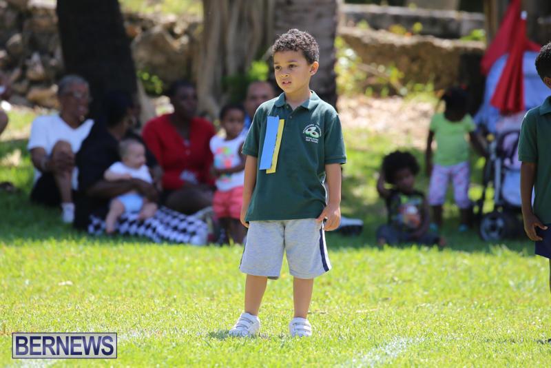 Devonshire-Preschool-Sports-Bermuda-May-22-2015-130