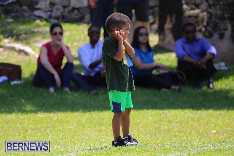 Devonshire-Preschool-Sports-Bermuda-May-22-2015-133