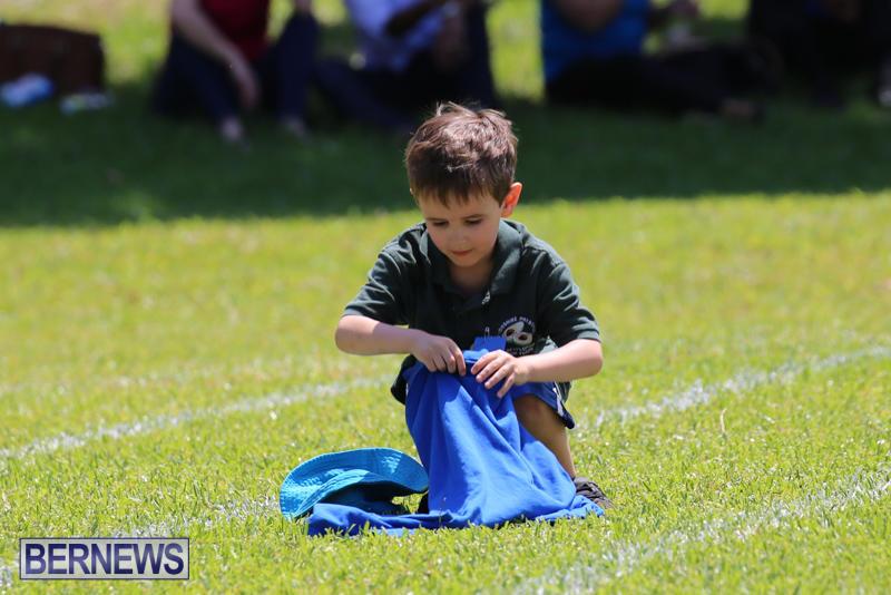 Devonshire-Preschool-Sports-Bermuda-May-22-2015-138