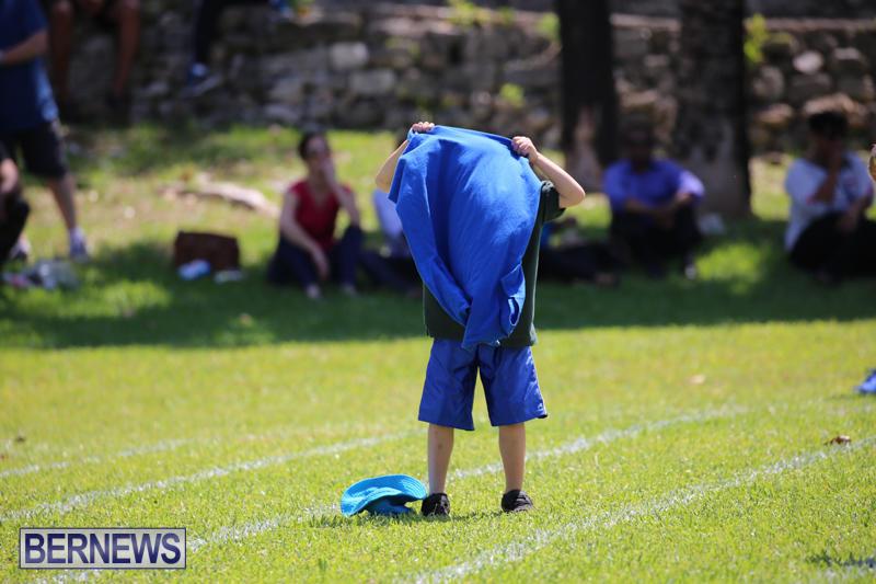 Devonshire-Preschool-Sports-Bermuda-May-22-2015-139
