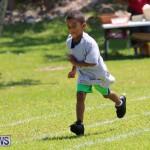 Devonshire Preschool Sports Bermuda, May 22 2015-144