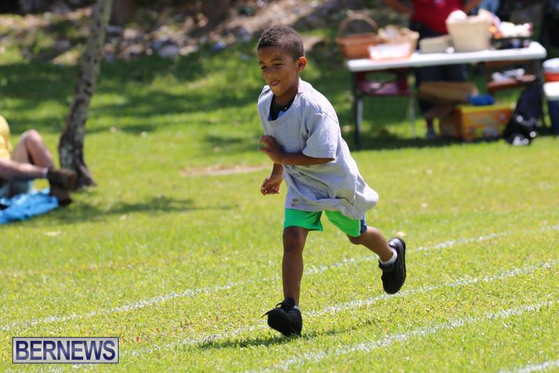 Devonshire-Preschool-Sports-Bermuda-May-22-2015-144