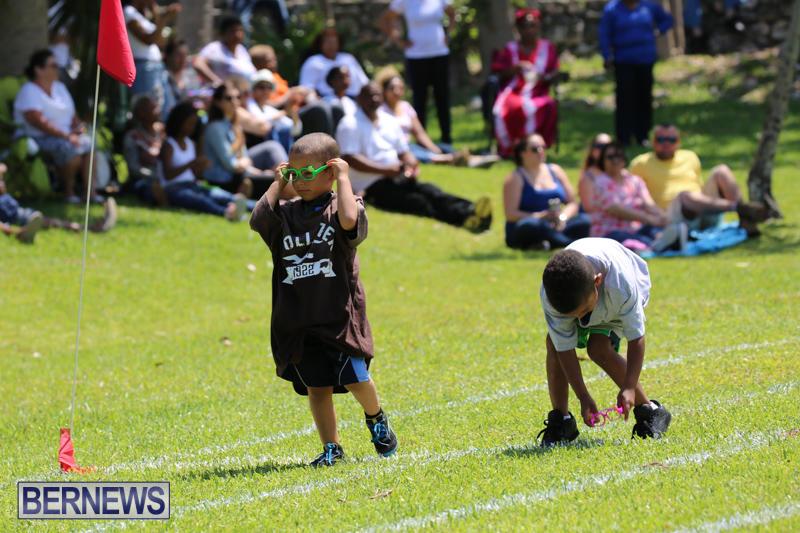 Devonshire-Preschool-Sports-Bermuda-May-22-2015-145