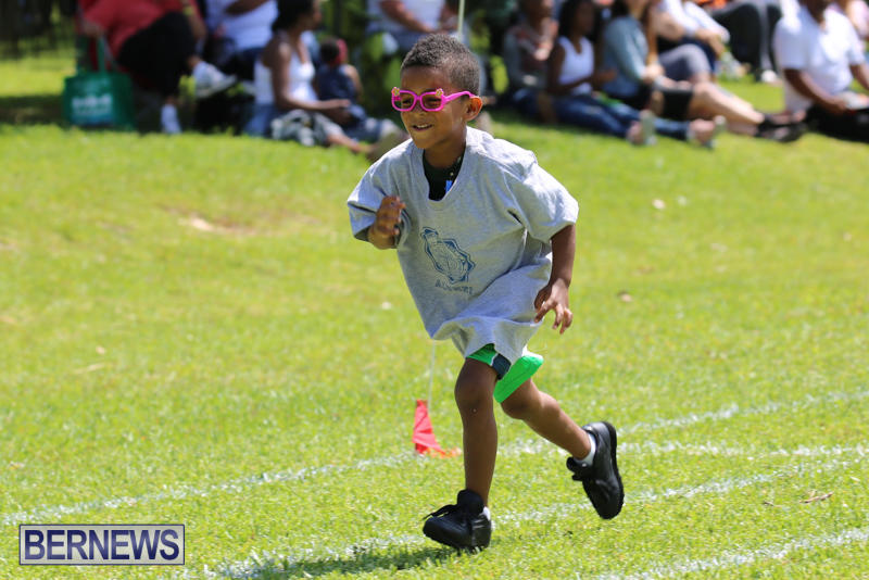 Devonshire-Preschool-Sports-Bermuda-May-22-2015-147