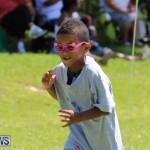 Devonshire Preschool Sports Bermuda, May 22 2015-148