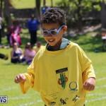 Devonshire Preschool Sports Bermuda, May 22 2015-150
