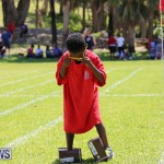 Devonshire Preschool Sports Bermuda, May 22 2015-156