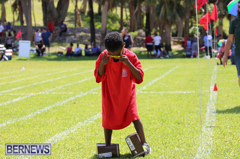 Devonshire-Preschool-Sports-Bermuda-May-22-2015-156