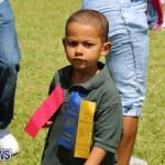 Devonshire Preschool Sports Bermuda, May 22 2015-158