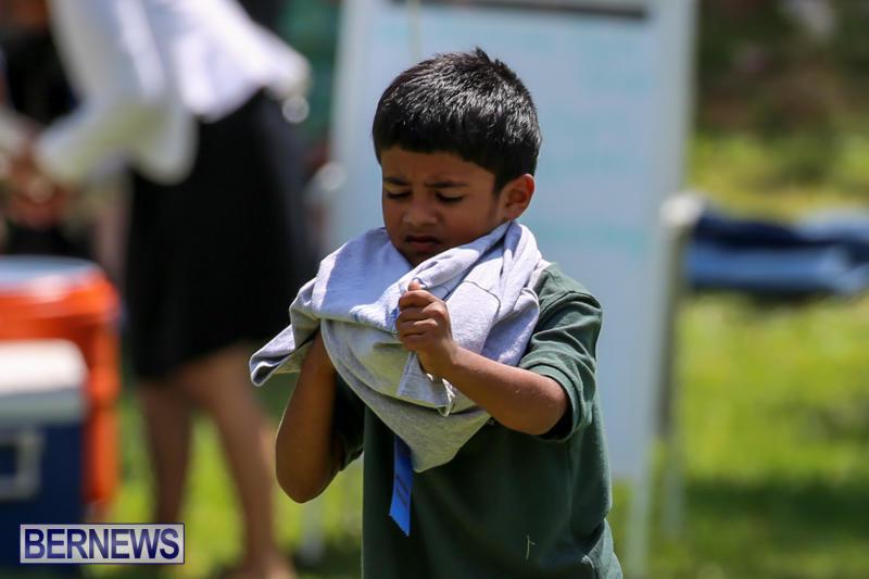 Devonshire-Preschool-Sports-Bermuda-May-22-2015-166