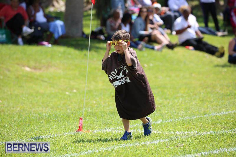 Devonshire-Preschool-Sports-Bermuda-May-22-2015-167