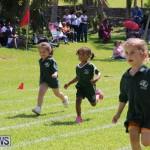 Devonshire Preschool Sports Bermuda, May 22 2015-17