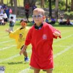 Devonshire Preschool Sports Bermuda, May 22 2015-170