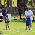 Devonshire Preschool Sports Bermuda, May 22 2015-172