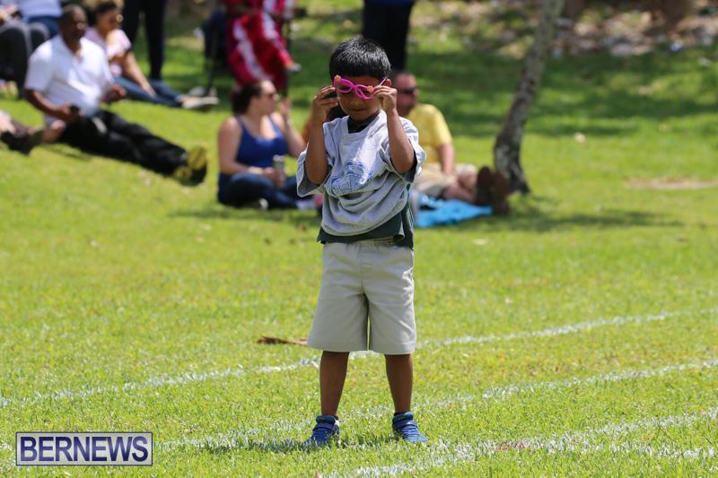 Devonshire-Preschool-Sports-Bermuda-May-22-2015-177