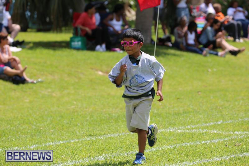 Devonshire-Preschool-Sports-Bermuda-May-22-2015-179