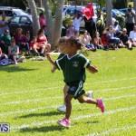 Devonshire Preschool Sports Bermuda, May 22 2015-18