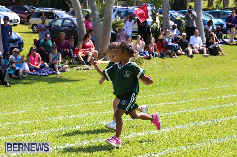 Devonshire-Preschool-Sports-Bermuda-May-22-2015-18