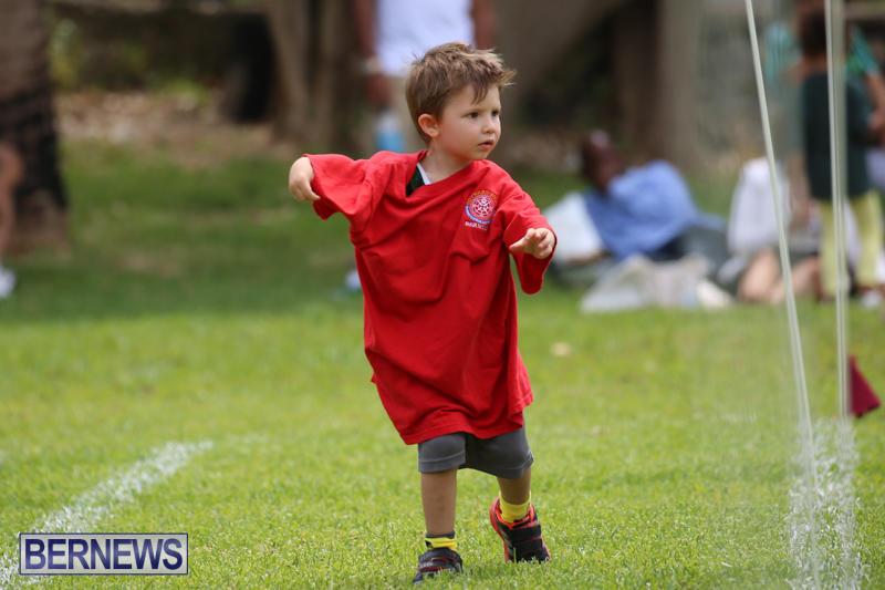 Devonshire-Preschool-Sports-Bermuda-May-22-2015-187