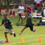 Devonshire Preschool Sports Bermuda, May 22 2015-212