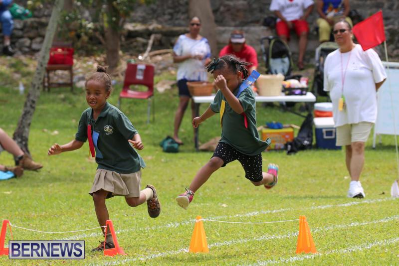 Devonshire-Preschool-Sports-Bermuda-May-22-2015-212