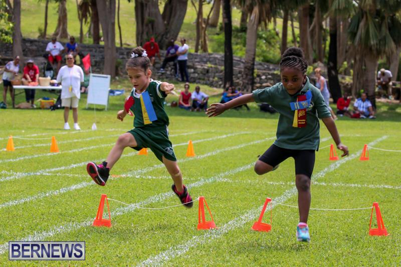 Devonshire-Preschool-Sports-Bermuda-May-22-2015-214