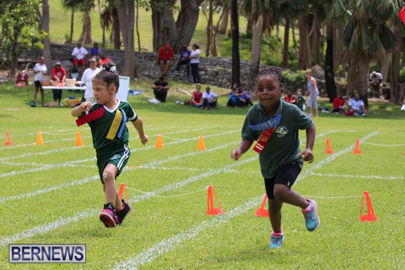 Devonshire-Preschool-Sports-Bermuda-May-22-2015-215