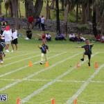 Devonshire Preschool Sports Bermuda, May 22 2015-220