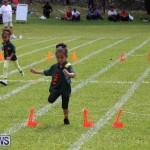 Devonshire Preschool Sports Bermuda, May 22 2015-222