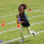 Devonshire Preschool Sports Bermuda, May 22 2015-224