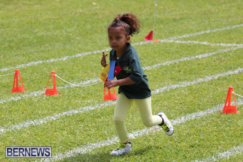 Devonshire-Preschool-Sports-Bermuda-May-22-2015-224