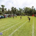 Devonshire Preschool Sports Bermuda, May 22 2015-228