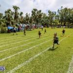 Devonshire Preschool Sports Bermuda, May 22 2015-229
