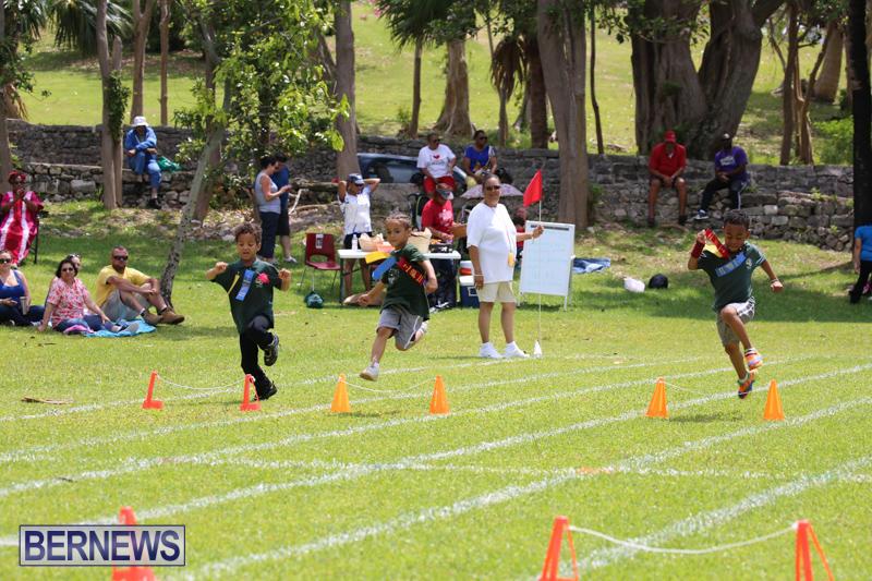 Devonshire-Preschool-Sports-Bermuda-May-22-2015-235