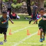 Devonshire Preschool Sports Bermuda, May 22 2015-237