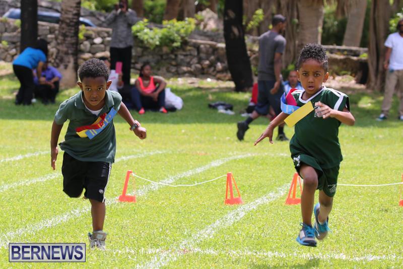 Devonshire-Preschool-Sports-Bermuda-May-22-2015-237