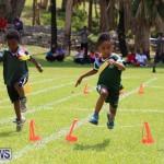 Devonshire Preschool Sports Bermuda, May 22 2015-238