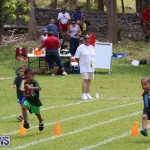 Devonshire Preschool Sports Bermuda, May 22 2015-240
