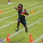 Devonshire Preschool Sports Bermuda, May 22 2015-242