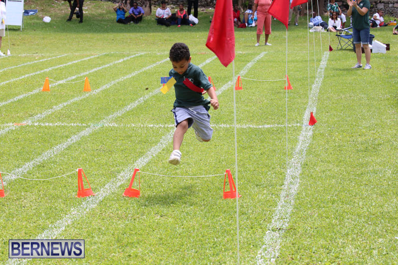 Devonshire-Preschool-Sports-Bermuda-May-22-2015-243