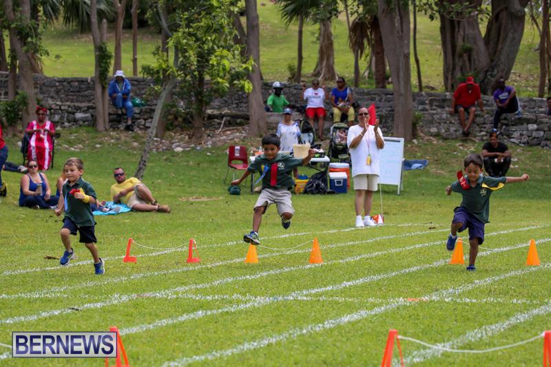 Devonshire-Preschool-Sports-Bermuda-May-22-2015-244