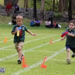 Devonshire Preschool Sports Bermuda, May 22 2015-245